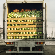How TMS Plays a Role in Marrying Sustainability with Food Safety